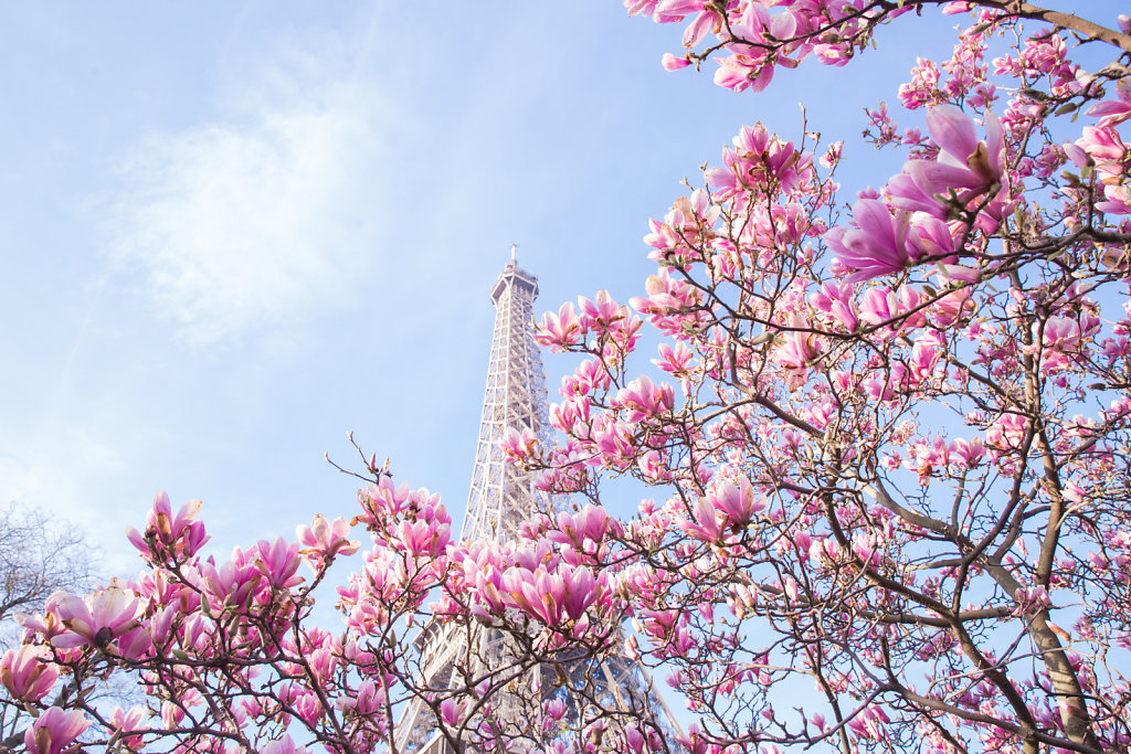 Spring in Paris (March 2016)